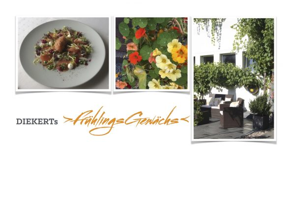 Plate with food, flowers, and outside seating area - Diekert's spring package banner
